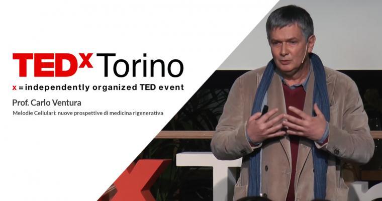 Prof Carlo Ventura Melodie Cellulari: nuove prospettive di medicina rigenerativa | Carlo Ventura | TEDxTorino
