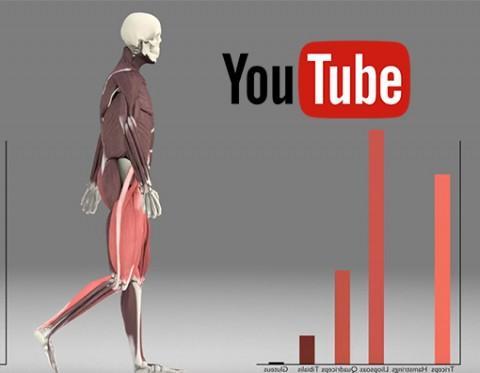 L'attivazione muscolare durante il cammino